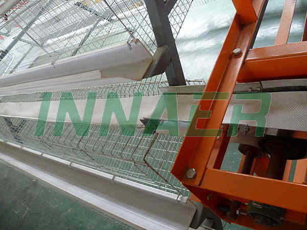 Automatic Egg Collect Machine
